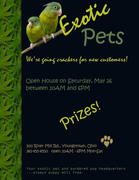 Pet shop flyer final